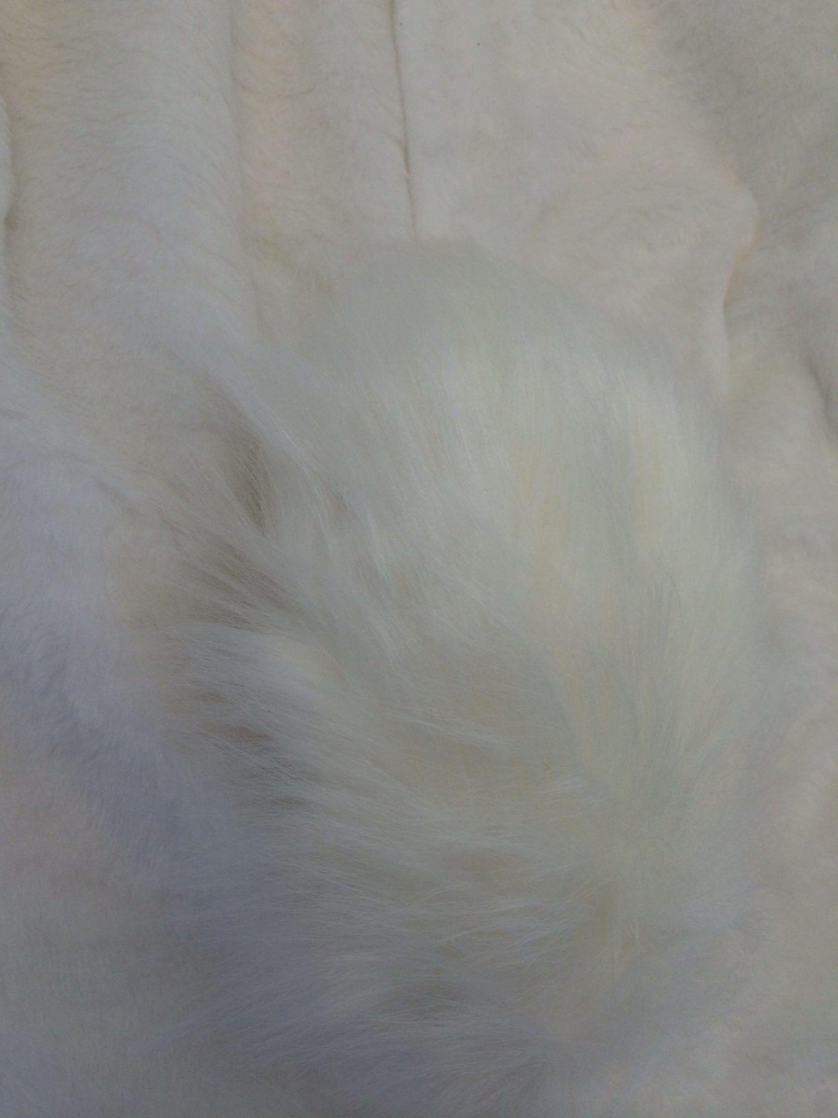 74p-Kostueme-Hasen-Maskottchen