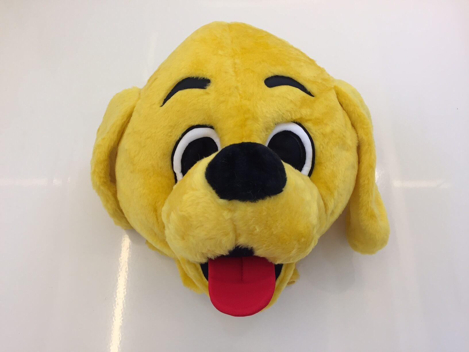 Hund-Kostuem-16p