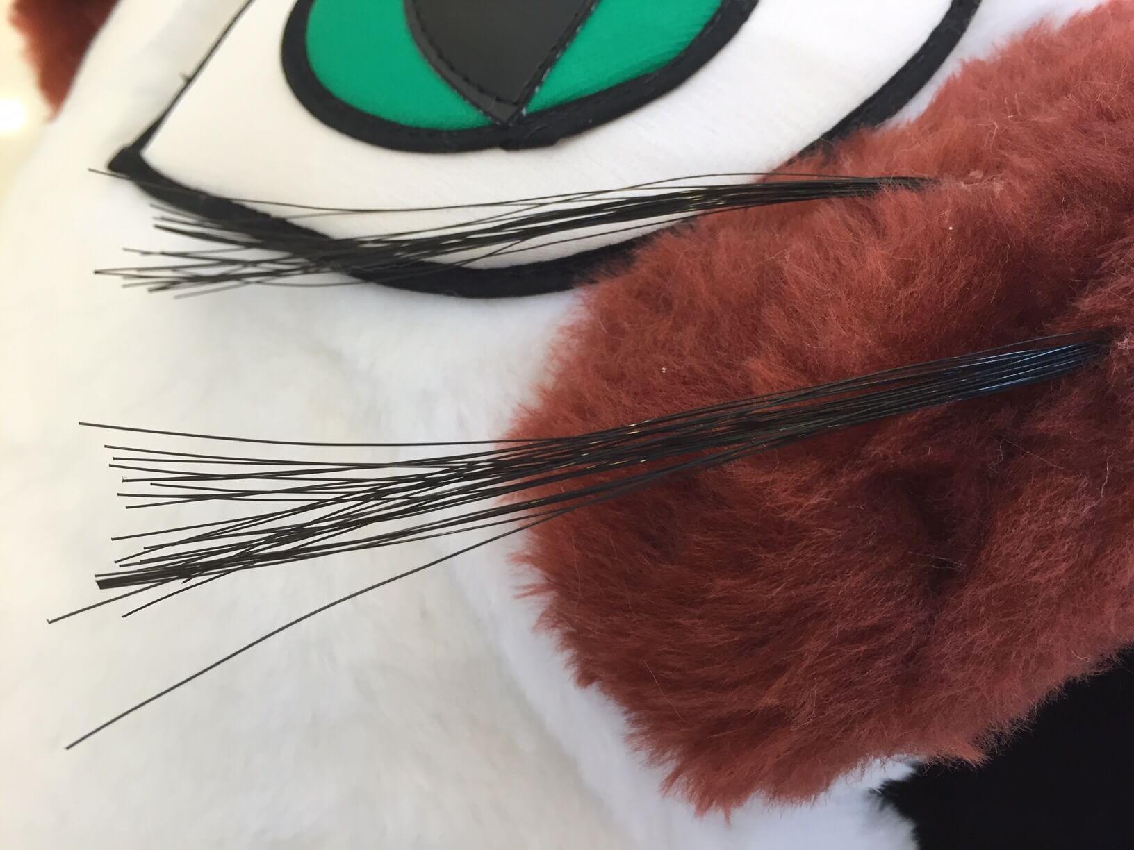 Katze-33p-Kostuem